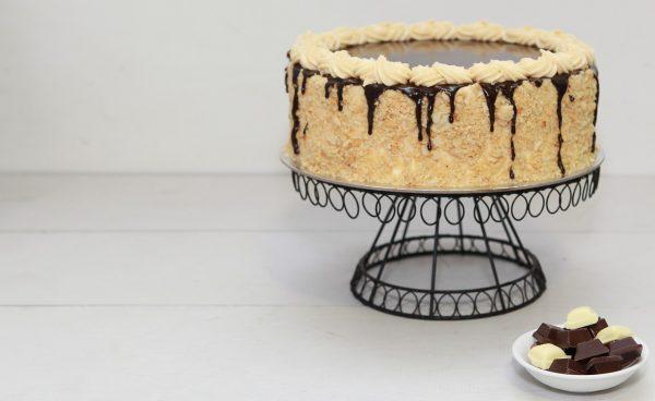 dortový piškotový korpus
